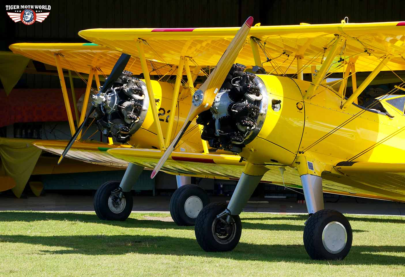 Tiger Moth World biplanes ready for take off at Torquay